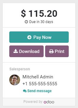 """客户门户中发票上的""""立即付款""""按钮。"""